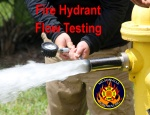 Nelso Hydrant Flow Testing